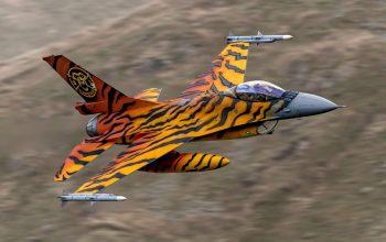 Tiger does the Mach Loop